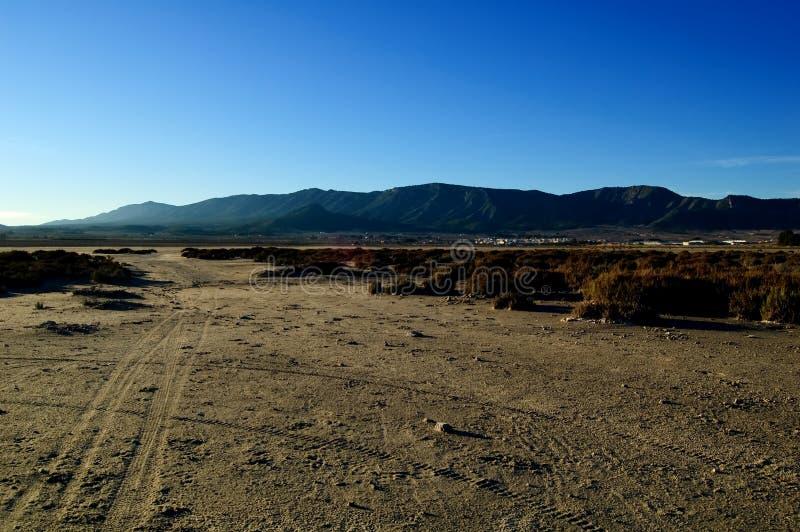 Climate change, global warming: Dry salt lake. Climate change, global warming in a dry salt lake - tire track - Laguna de Salinas (Spain royalty free stock image