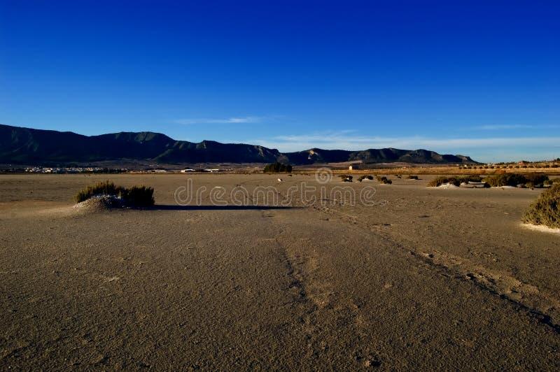 Climate change, global warming: Dry salt lake. Climate change, global warming in a dry salt lake - tire track - Laguna de Salinas (Spain stock photography