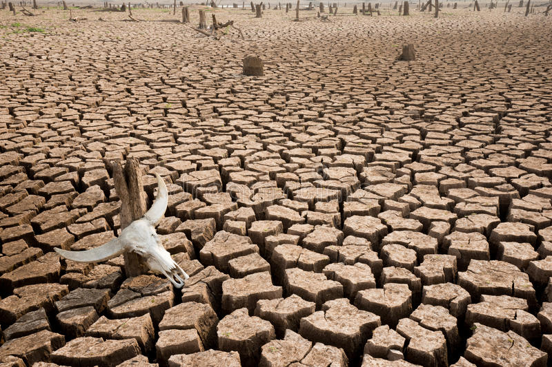 Climate change world crisis royalty free stock photos
