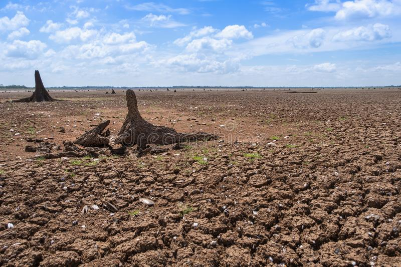 Climate drought, Terrain cracked soil in hot weather.  stock photos