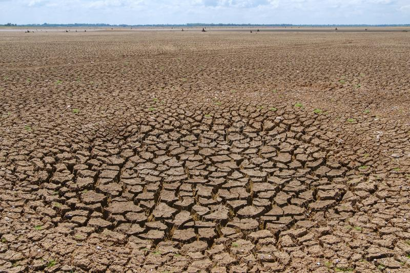 Climate drought, Terrain cracked soil in hot weather.  stock images