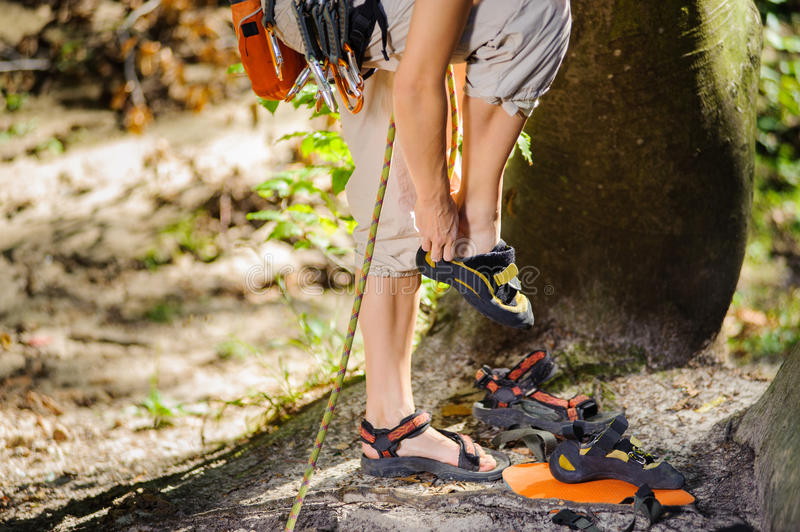 Climber putting climbing shoes on - close up royalty free stock photography