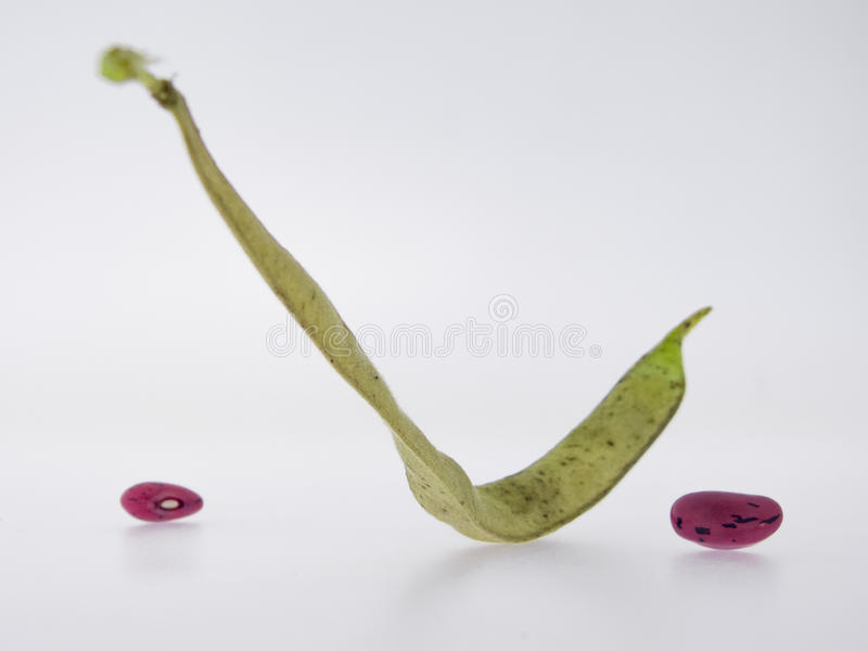 Climbing beans, fire beans on white background royalty free stock photos