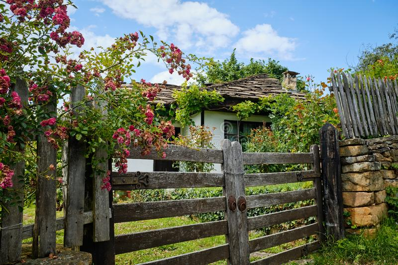 Climbing roses over rural cottage gate stock images