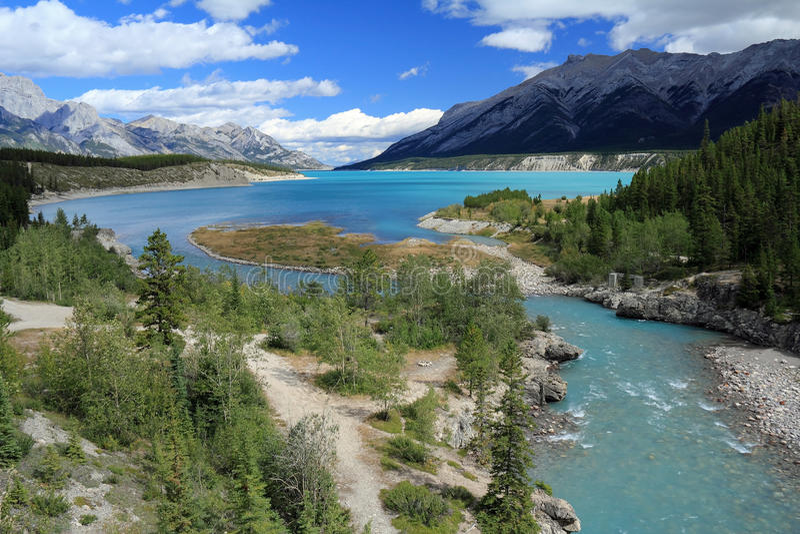 Cline Fluss- Kootenay Ebenen, Alberta lizenzfreie stockbilder