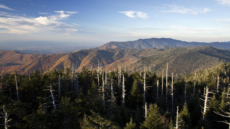 Clingmans Dome Great Smoky Mountains stock image