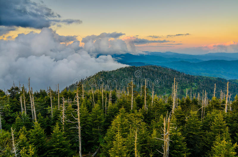 Clingmans Dome, Great Smoky Mountains, tennessee royalty free stock photos