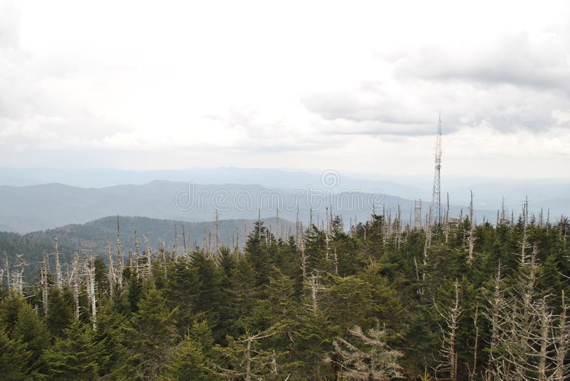 Clingmans Hauben-rauchige Berge stockfoto