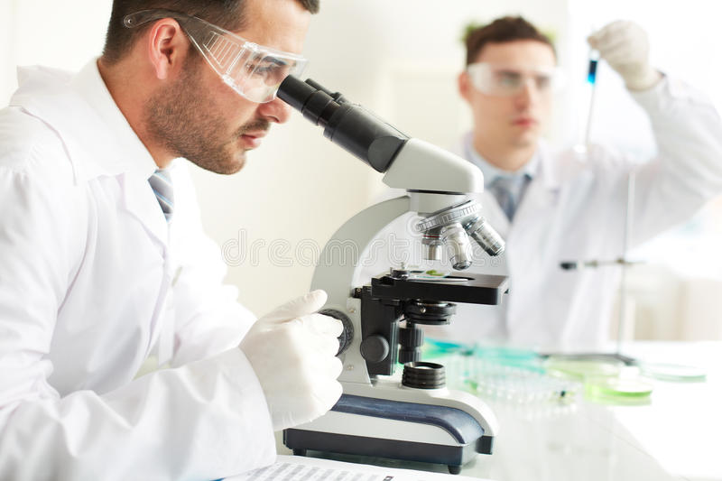 Download Clinical study stock image. Image of discover, male, chemistry - 33833263