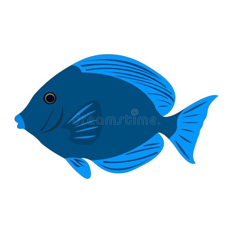 Clip art azul atlántico colorido de los pescados de Tang stock de ilustración