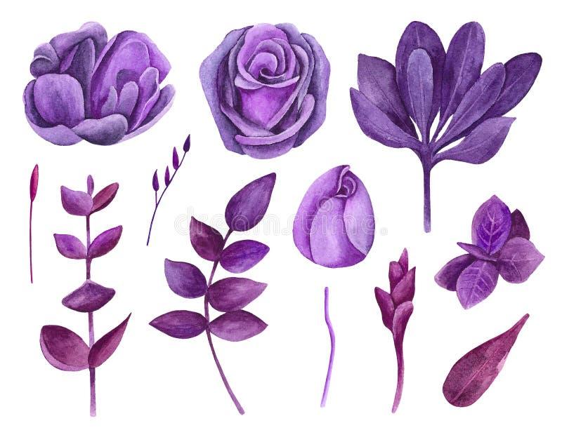 Clip art púrpura del vector de las flores de la acuarela Clipart floral de la lila stock de ilustración