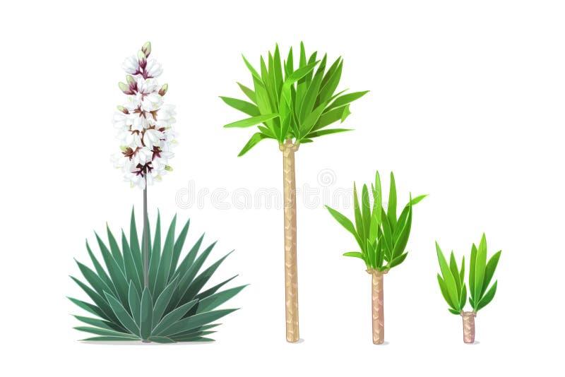 Clipart das plantas dos desenhos animados do vetor ilustração stock