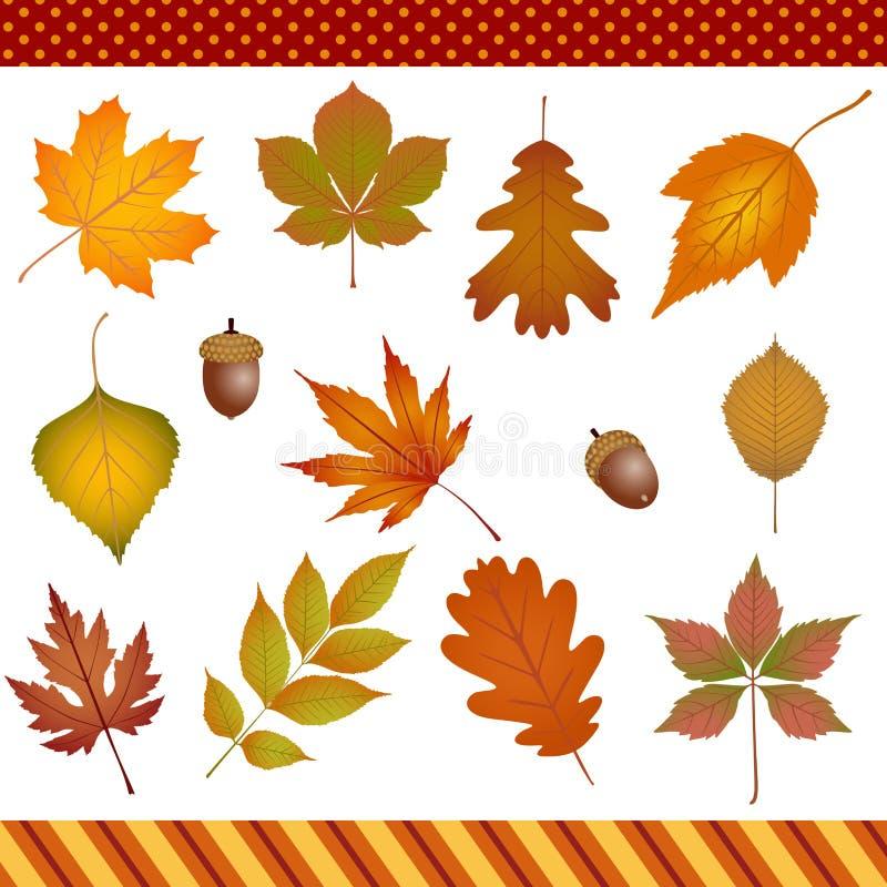 Clipart digital de las hojas de otoño libre illustration