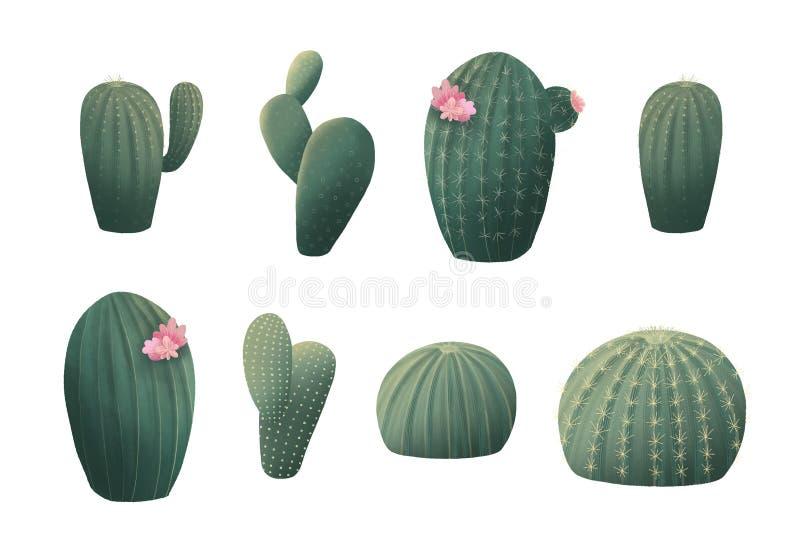 Clipart (images graphiques) de cactus Clipart graphique botanique vert illustration libre de droits