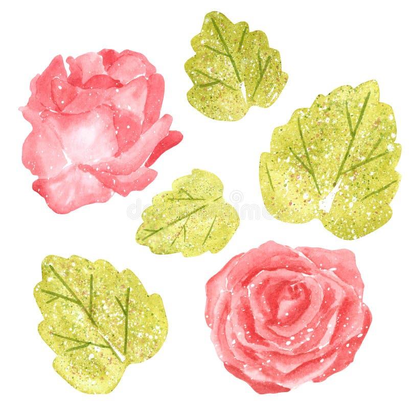 Clipart ställde in med den rosa rosa blomman och gröna sidor, utdragen vattenfärg för hand royaltyfri illustrationer