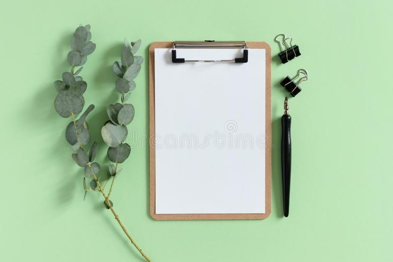 Clipboard, paper clips, calligraphy pen and eucalyptus branch. On a green pastel background stock photography
