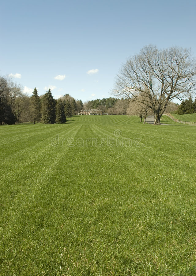 Clipped Lawns royalty free stock image