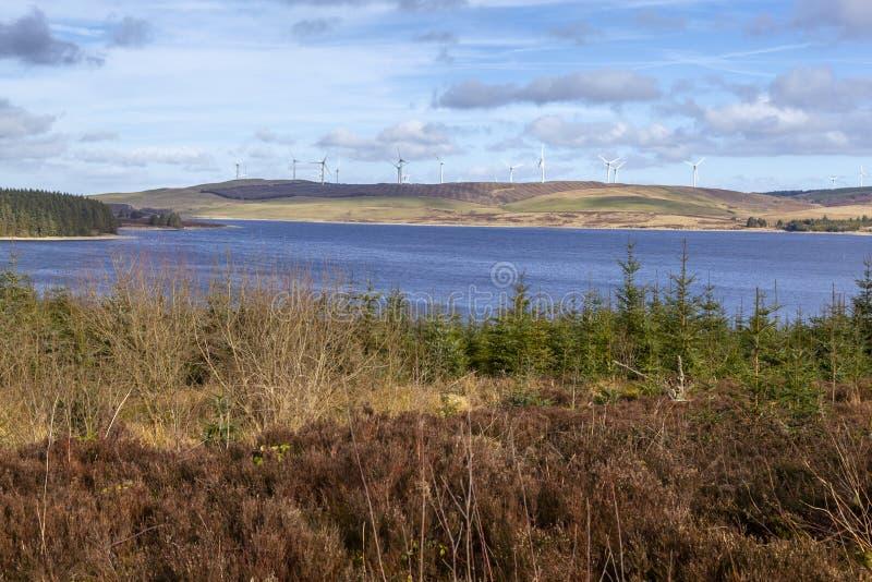 Clocaenog Windfarm y Llyn Brenig fotos de archivo