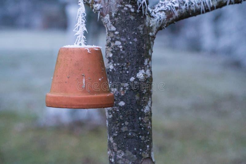 Cloche d'argile comme décoration sur un arbre au matin givré image stock