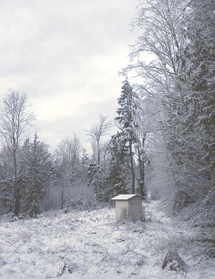 Cloche de l hiver