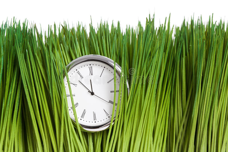 Clock and green grass. Close up royalty free stock photo