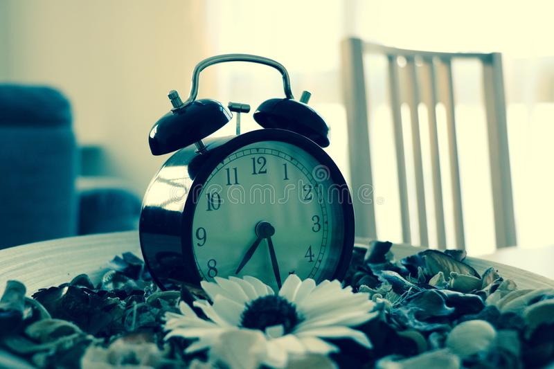Clock with scented flowers and accessories for interior design royalty free stock photography