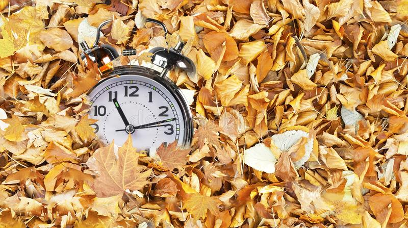 Clock time fallen autumn winter leaves top view for winter sales background royalty free stock photography
