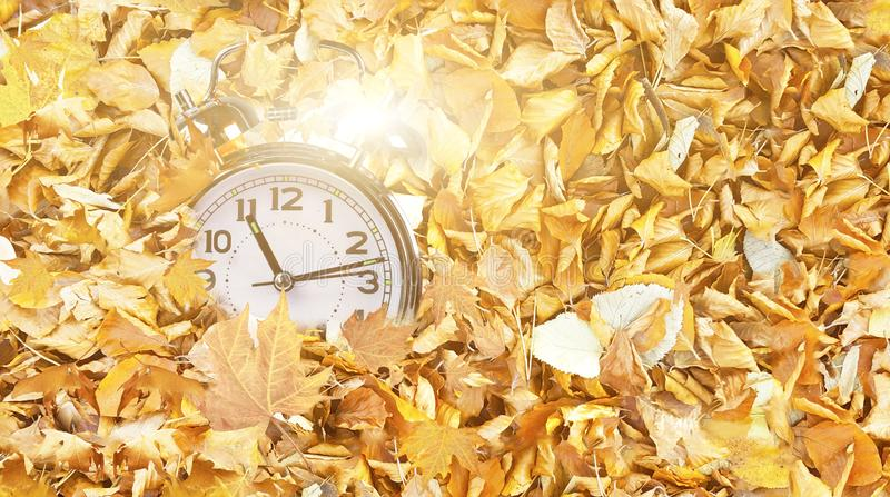 Clock time fallen autumn winter leaves top view for winter sales background stock photo
