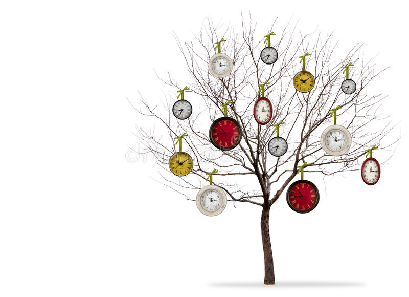 Download Clocks Hanging From A Tree On A White Background Stock Photo - Image: 23180734