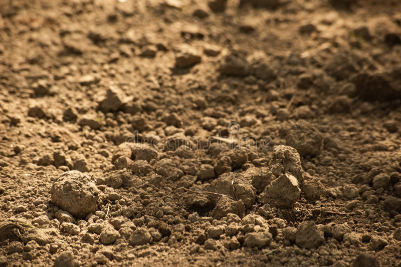 Clods of dry brown ground, soft focus. Background with clods of dry brown ground, soft focus, soil, surface, natural, field, closeup, garden, agriculture, nature stock photography