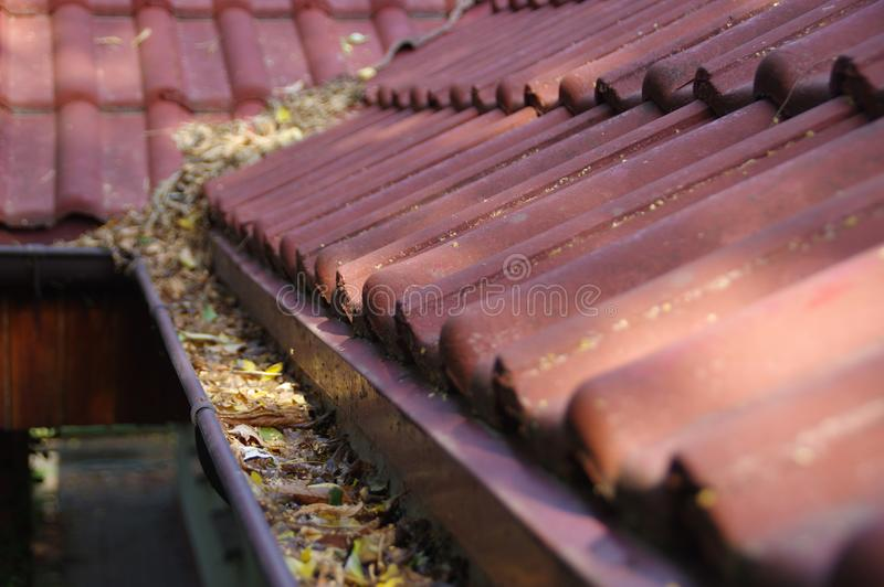 Clogged gutter. Through the leaves. Spring and autumn cleaning of the roof gutter stock photography
