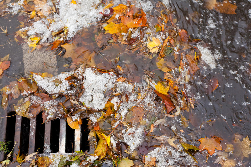 Clogged sewer blocks rainwater runoff. Hail, fall leaves and debris block up sewer hole restricting runoff flow royalty free stock photos