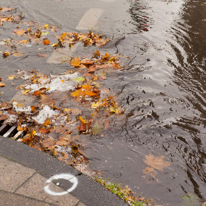 Clogged sewer blocks rainwater runoff. Hail, fall leaves and debris block up sewer hole restricting runoff flow stock photos