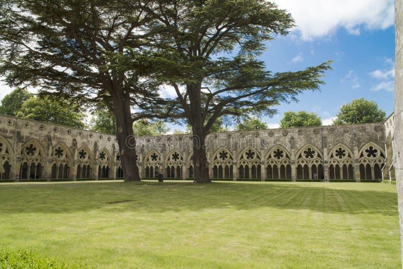 Cloister Courtyard Salisbury Cathedral stock photos