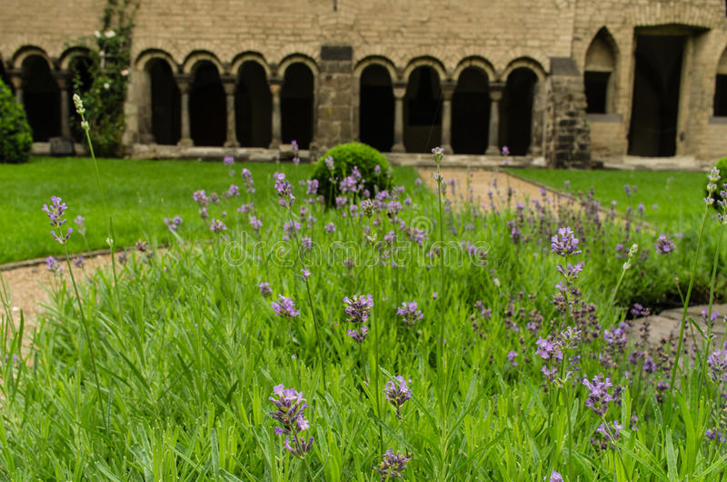 Cloistered courtyard royalty free stock images