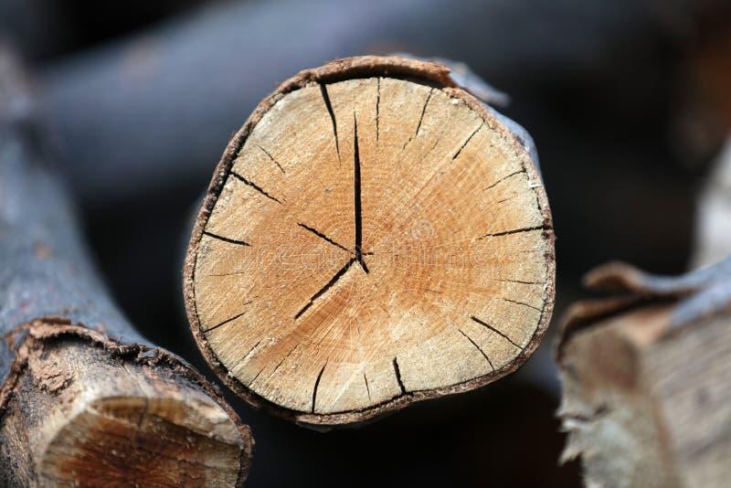 Clokc de madera imagenes de archivo