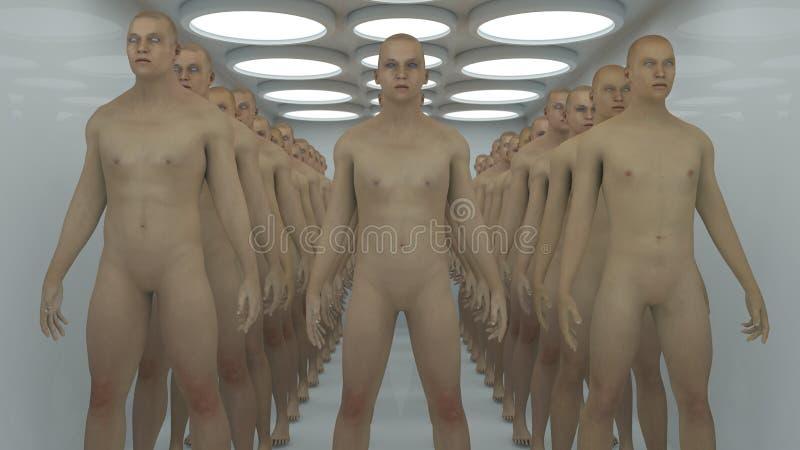 Clones de mâle de humanoïde et pièce futuriste illustration libre de droits
