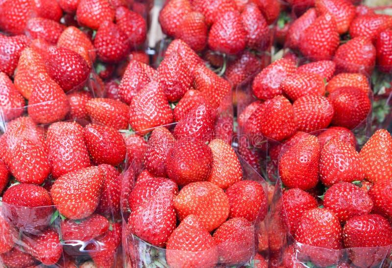 Clorful smaklig ny mogen jordgubbe i klar plastpåse royaltyfri foto