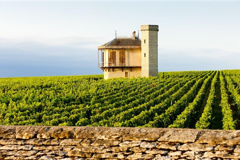 Clos Blanc De Vougeot Castelo foto de stock royalty free