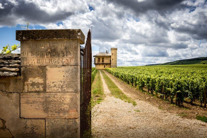 Burgundy, Chateau de La Tour and vineyards, Clos de Vougeot. France. Clos de Vougeot, also known as Clos Vougeot, is a wall-enclosed vineyard, in the Burgundy royalty free stock photo