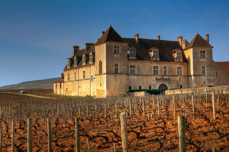 Clos de Vougeot, Burgundy, France. The vineyards of Clos de Vougeot is one of the most famous in the world. The wine growing on this particular parcel was royalty free stock image