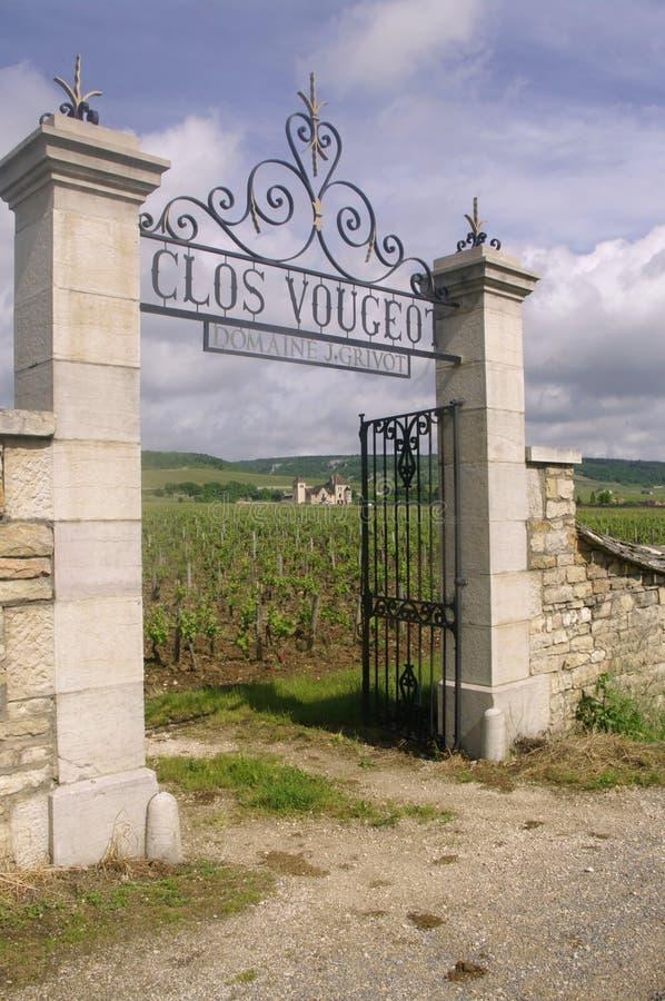 Clos Vougeot стоковая фотография rf
