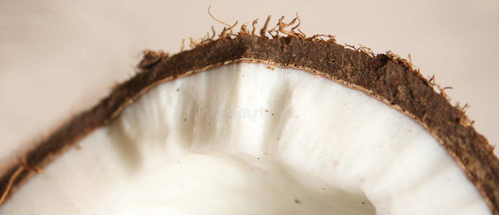 Close coconut royalty free stock image