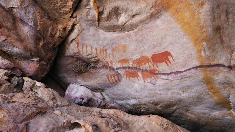 Close shot of bushman painting on a rock  in Cederberg mountain stock images