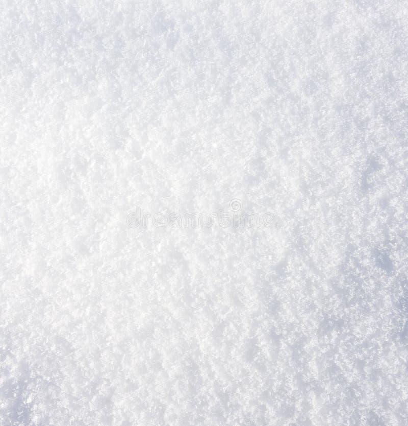 close snow texture up white arkivfoto