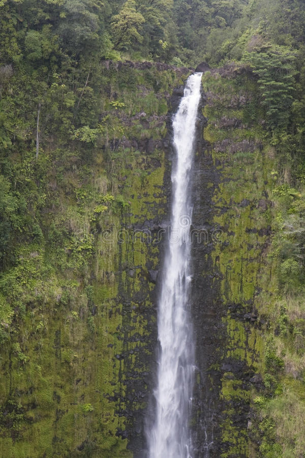 Close-up падений Waimoku, Мауи, Гавайских островов стоковые фотографии rf
