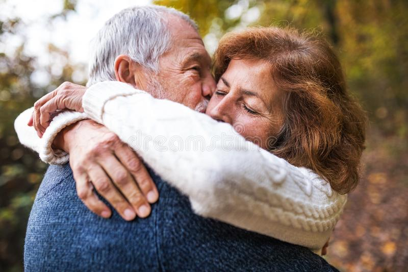 A close-up of a senior couple hugging in an autumn nature, kissing. royalty free stock images