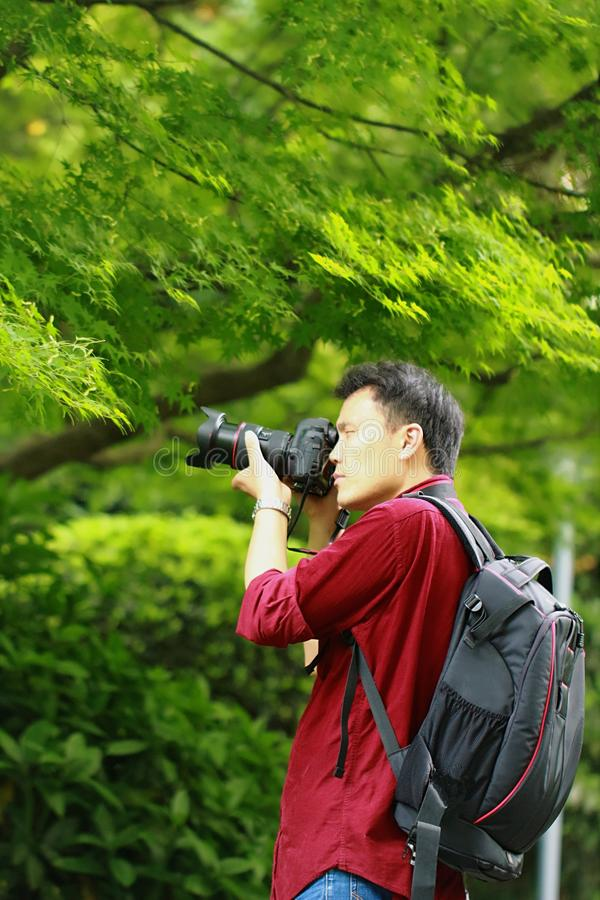 Close up Aisan Chinese man photographer hold camera work in nature shot maple stock images