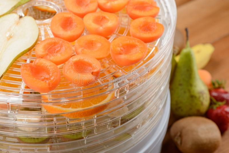 Close-up on apricot halves. On a dehydrator rack. Slices of different fruits on separate racks royalty free stock images