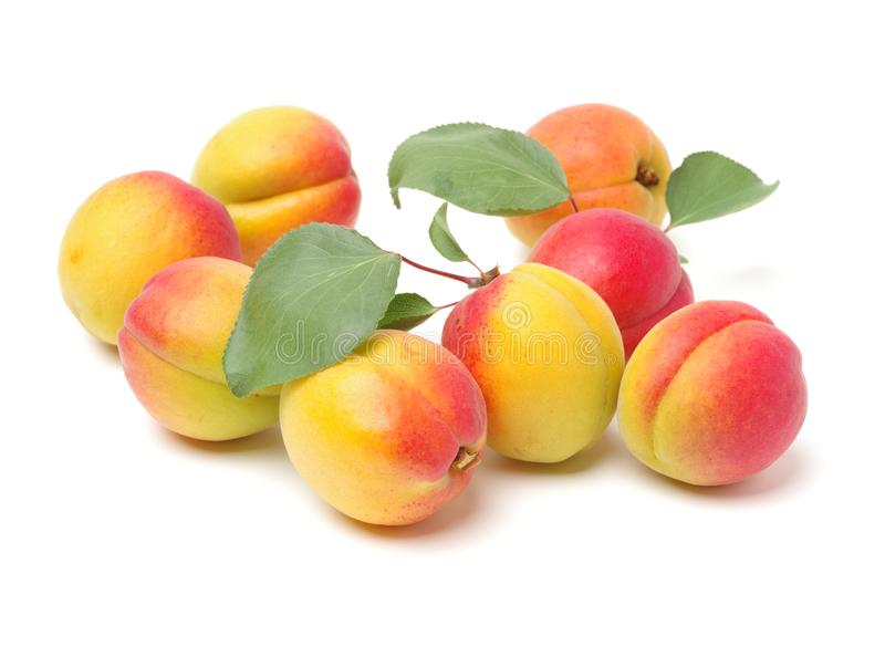 Close up on apricot and leaf royalty free stock photos
